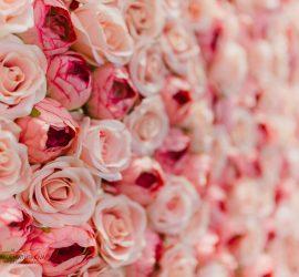 Kvetinová stena